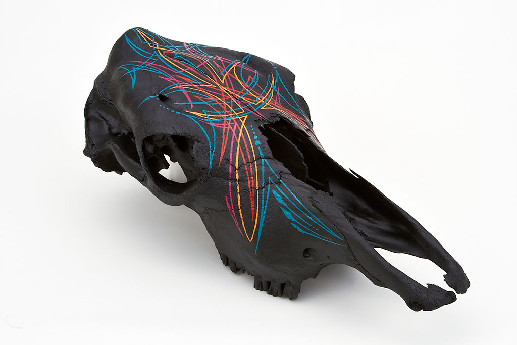 Cow skull with southwest striping
